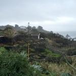 Der Lavagarten des Caloura Hotels