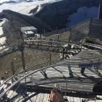 Glacier 3000, der Alpine Coaster